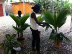 Preparing the Lovely Pots